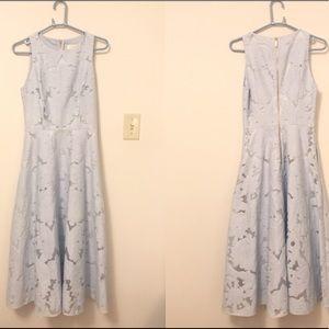 8b87021eb7a04a Ted Baker Dresses - New Ted Baker Roshi Burnout Jacquard Midi Dress